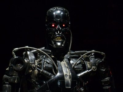 Terminator T-800 Singularity Image