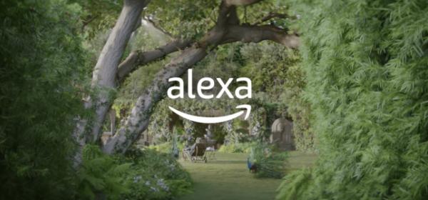 Alexa Super Bowl Commercial Screen Image